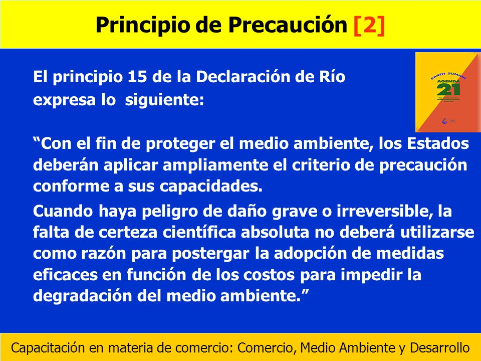 Principio de Precaución [2]
